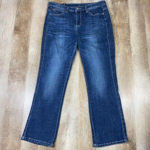Aura Wrangler Jeans Wm Sz 10S Stretch